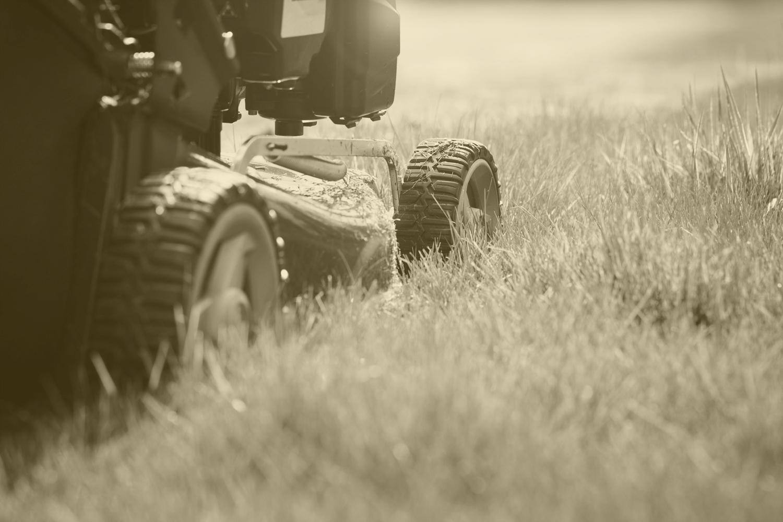 tonte gazon pelouse prairie mazan